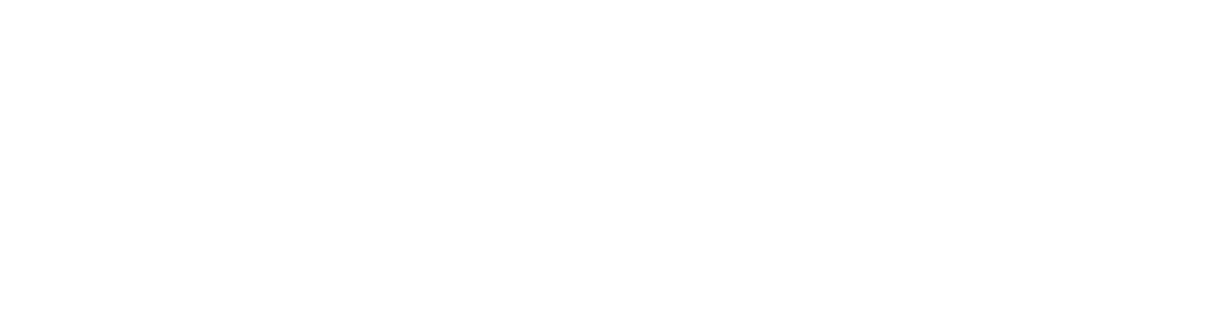 Parallelfestival17